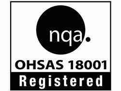 OHSAS 18001 Icon