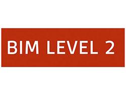 BIM Level 2 Icon